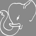 Kaleen Logo