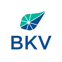 Kalnin Ventures logo icon