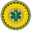 Kemsa logo icon