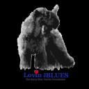 Kerry Blues logo icon