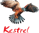 Kestrel Liner Holdings Ltd Cookie Policy logo icon