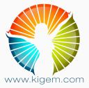 Ki̇gem logo icon
