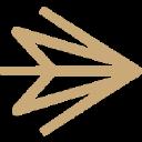 Kinesis Inc logo icon