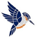 Kingfisher Systems, Inc logo icon