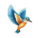 Kingfisher World logo icon