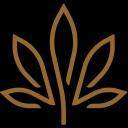 Kiva Confections logo icon