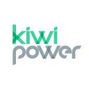 Kiwi Power logo icon