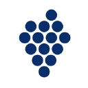 Kluster Intelligence logo icon