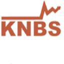 Kenya National Bureau Of Statistics logo icon