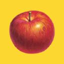 Knouse logo icon