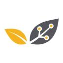 Knowledge E logo icon