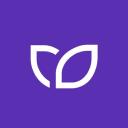 Kontist logo icon