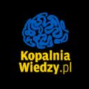 Kopalnia Wiedzy logo icon