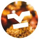 Koszulkowo logo icon