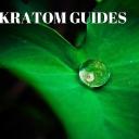 Kratom Guides logo icon