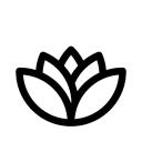 Home Kurvana Team logo icon