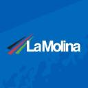 La Molina logo icon