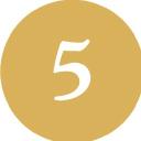 Lead5 logo icon