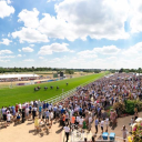 Read Leicester Racecourse, Leicestershire Reviews