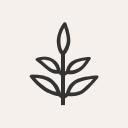 Live Kindly logo icon