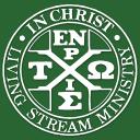 LSM Chinese Company Logo