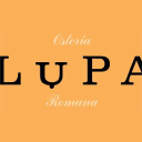 Lupa New York logo icon
