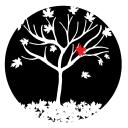 MAC5 Web Design & Marketing logo