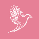 Maclaren Jones Marketing AG logo