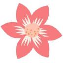 Mademoiselle Aelle logo icon