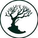 Mad Tree Brewing logo icon