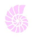 Maggie Shannon- Residential Design logo
