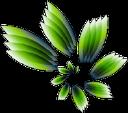 Mag Grow logo icon