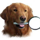 Magnifiers & More logo