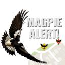 Magpie Alert! logo icon