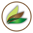 Mahogany Xan Communications, LLC logo