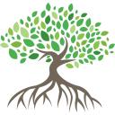 Mangrove Networks on Elioplus