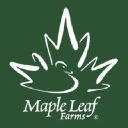 Maple Leaf Farms logo icon