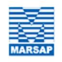 Marsap Services Pvt. Ltd. logo