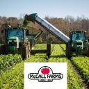 McCall Farms Company Logo