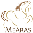 Mearas Group logo