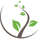 Media Soil LLC logo