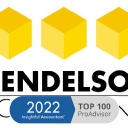 Mendelson Consulting on Elioplus