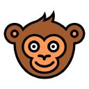 Monkey Test It logo icon