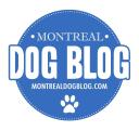 Montreal Dog Blog logo icon