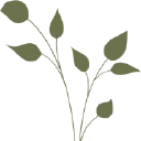 Mountainside Bride logo icon