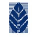 Mscm logo icon