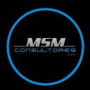 MSM Consultores, C.A. logo