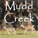 Mudd Creek logo