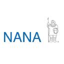 NANA Dev logo