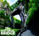 Weddings By Natural Bridge logo icon